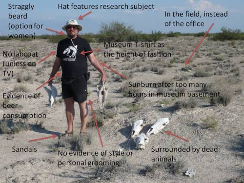 How to spot a palaeontologist