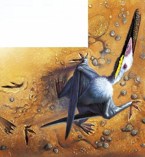 pterod-walking2