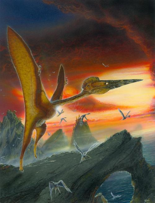 Pterosaurs and birds not competing. Image courtesy of Todd Marshall, used with permission.