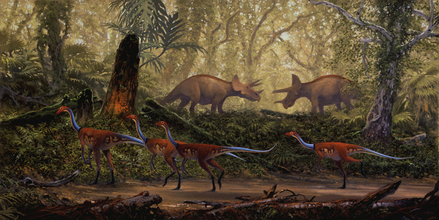Awesome Paleoart  Struthiomimus