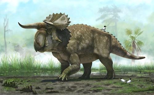 Nasutoceratops titusi by Andrey Atuchin