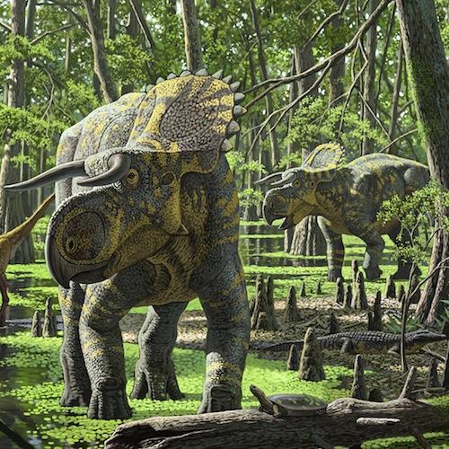 Nasutoceratops titusi by Raul Martin 300 dpi