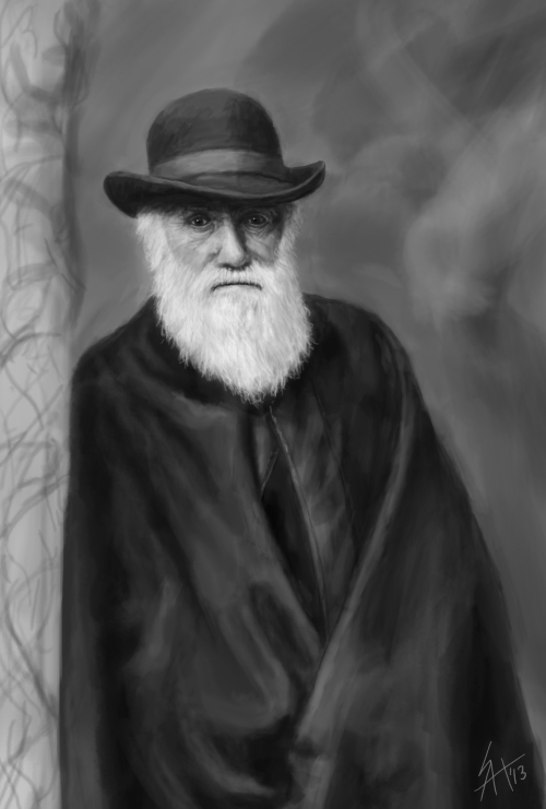Darwin speed painting