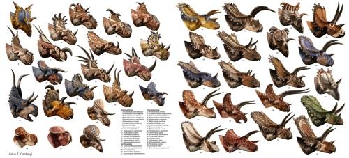 Csotonyi_Ceratopsians_1300